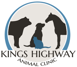 Kings Highway Animal Clinic